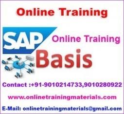SAP BASIS online training institute in Ameerpet, SAP BASIS Online Training Institute from Hyderabad India.   Online Training Materials   Online Training   Scoop.it