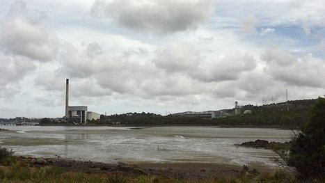 Global interest in pulp mill plan   Tasmanian Politics   Scoop.it