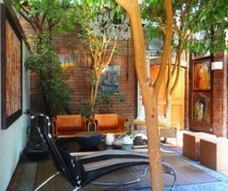 Trees interacting with living space in Chilean home | Gabby's Gab | Scoop.it