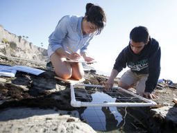 Students explore organisms from the sea, helping science - Santa Maria Times | NGSS Resources | Scoop.it