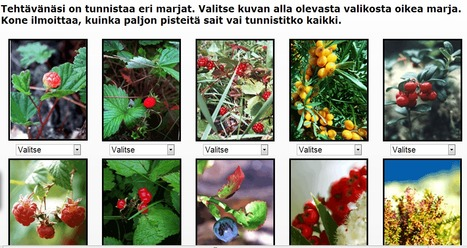 Pelit - Savon Sanomat | Hyvinvointia senioreille | Scoop.it