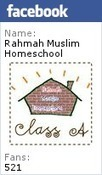 Guest Post: The Significance of Interaction between Homeschoolers and Students at School Level | The Resources of Islamic Homeschool in the UK | Articles | Scoop.it