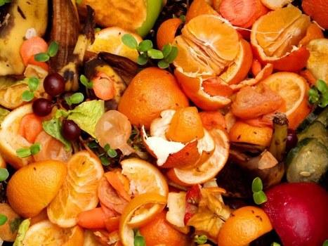 Desperdicio de comida | Recytrans – Blog | Reciclaje | Scoop.it