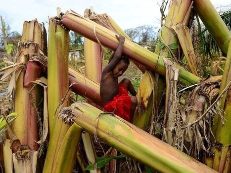#Poor nations want U.S. to pay reparations for extreme weather #climate | Messenger for mother Earth | Scoop.it