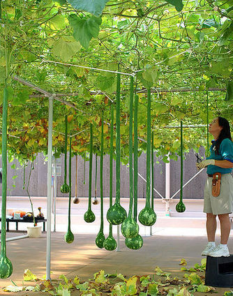 Tips for Developing a Hydroponic Garden - Plant Nutrients | Hydroponics World | Scoop.it