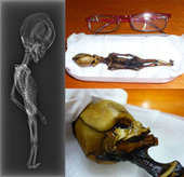 Bizarre 6-Inch Skeleton Shown to Be Human | Amazing Science | Scoop.it