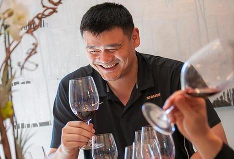 Behind the Success of Yao Ming's Napa Valley Winery | Vitabella Wine Daily Gossip | Scoop.it