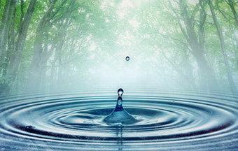 UTAMA WATER FILTER | Just another WordPress site | General News | Scoop.it