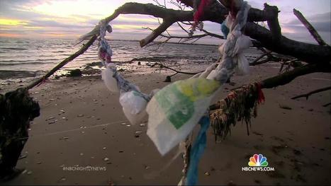 Ocean Is Filled With Trillions of Plastic Pieces! | CSR - Corp. Social Responsibility | Scoop.it