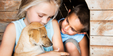 Talk to the Animals: What kids can learn from pets | Gems for a Happy Family Life | Scoop.it