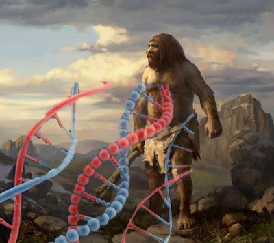 Con ADN se descubre la evolución de la agricultura en Europa | World Neolithic | Scoop.it