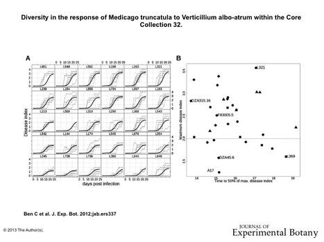 Natural diversity in the model legume Medicago truncatula allows identifying distinct genetic mechanisms conferring partial resistance to Verticillium wilt   La Voyance par telephone consiste franco prosperite   Scoop.it