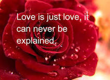 Happy Rose Day Wishes, Greetings 2014 | Valentine Day 2014 Quotes, Happy Valentine Day Messages, SMS, Wallpapers | valentines day quotes and messages | Scoop.it
