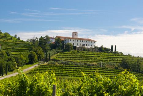 Top 8 reasons to visit a forgotten corner of Italy: Friuli-Venezia Giulia | Italia Mia | Scoop.it