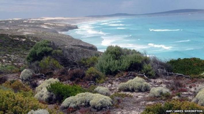 Indigenous Australians win land claim   BBC   Kiosque du monde : Océanie   Scoop.it