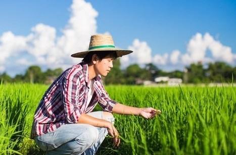 Big Data : L'internet des objets au service de l'agriculture en Chine | Questions de développement ... | Scoop.it