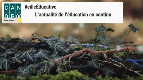 VeilleÉducative - L'actualité de l'éducation en continu | Sélection pour l'enseignement TERTIAIRE dans les voies générale, technologique et professionnelle | Scoop.it