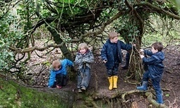 The forest school revolution: leaves, logs and life skills | Early Childhood & Nature | Scoop.it