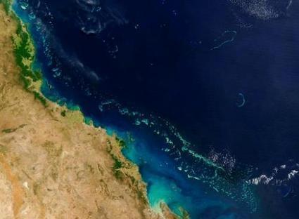 Coal port plan will kill Great Barrier Reef: activists | Sustain Our Earth | Scoop.it