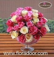 Send I'm Sorry Flowers to Egypt for Apologizing | Online Florist in Egypt | Scoop.it