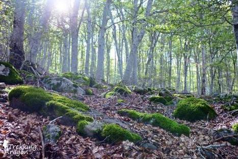 Objetivo, senderismo y naturaleza - Outdoor Actual | Montaña | Scoop.it