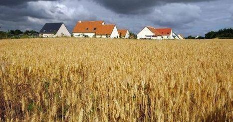 Le paysage français, grand oublié des politiques d'urbanisation | e-PAISATGE  e-LANDSCAPE  e-PAISAJE | Scoop.it