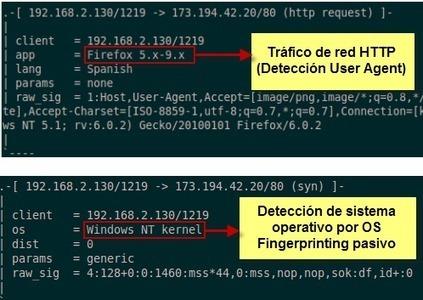 Pentesting: Fingerprinting para detectar sistema operativo | Ciberseguridad + Inteligencia | Scoop.it