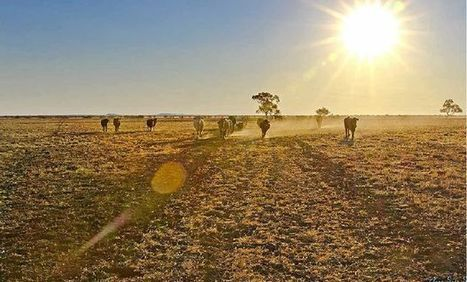 Extra funding for drought-affected distance ed families | Home Schooling | Scoop.it