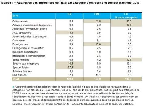 Rapport sur l'évolution des PME en 2014 : une première prise en compte de l'ESS | Economie responsable et développement durable | Scoop.it