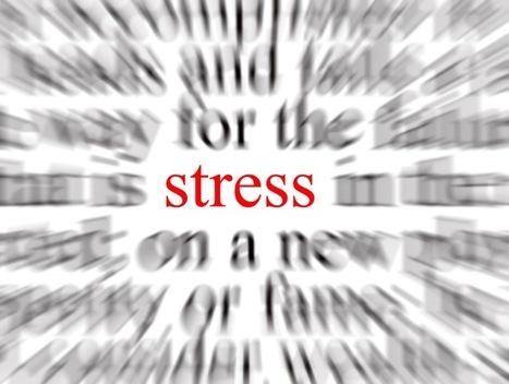 Stress Is Not Your Enemy | Surviving Leadership Chaos | Scoop.it