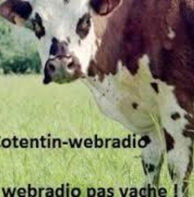 #Normandie: PORTS DE LA MANCHE : OBJECTIF QUALITÉ ! - Cotentin webradio actu buzz jeux video musique electro  webradio en live ! | Les news en normandie avec Cotentin-webradio | Scoop.it