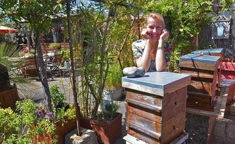 Et si vous installiez une ruche chez vous ? - Kaizen magazine   Le petit journal des alternatives   Scoop.it