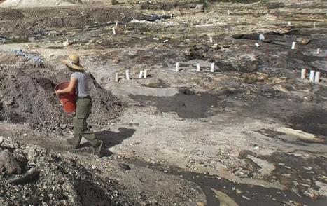 Prehistoric village found in downtown Miami - Miami-Dade - MiamiHerald.com | Ancient cities | Scoop.it