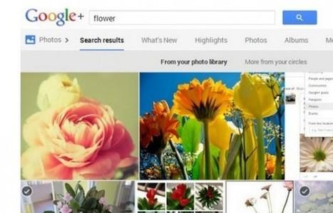 El buscador de Google Plus ya reconoce objetos en las fotografías | Concursos y sorteos interesantes | Scoop.it