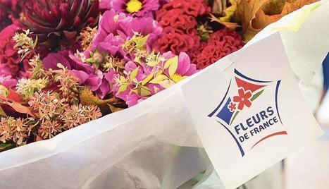 Pour la Fête des mères, offrez des «Fleurs de France» | ECONOMIES LOCALES VIVANTES | Scoop.it