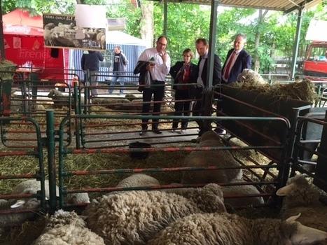 Foire agricole internationale de Novi Sad | Revue de presse FNCUMA | Scoop.it