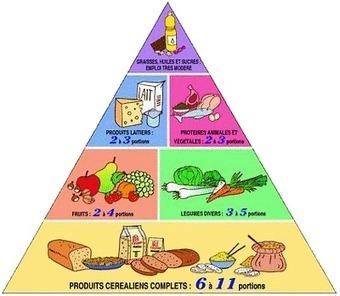 E-SPORTING-COACH - Les bases de l'alimentation | SPORT | Scoop.it