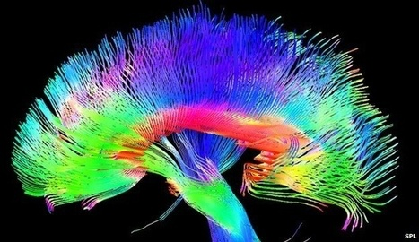 Science Reveals Artists Really Do Have Different Brains | visual data | Scoop.it