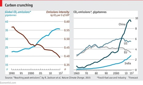 Global CO2 emissions are set to stall in 2015 | Year 1 Micro - Market Failure | Scoop.it