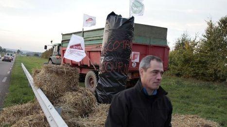 L'écotaxe | Les moyens de transports en Bretagne: atouts et faiblesses | Scoop.it