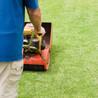 Media Tristate Lawn Care
