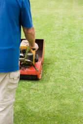 Media Tristate Lawn Care - a compelling landscape company in Media, PA | Media Tristate Lawn Care | Scoop.it