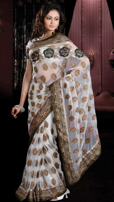 Net Sarees Make a Perfect Party Wear | Indian Sarees Online | Scoop.it