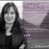 Carole BELLICAUD (carolebellicaud) on about.me | Réalisations & projets personnels | Scoop.it