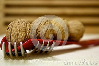 Walnuts and Forks   SEO Social Media Marketing Digital Marketing   Scoop.it