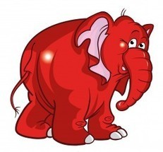 Brand neglect invites the elephant into the showroom   Leadership, Going to Market, Getting things Done   Scoop.it