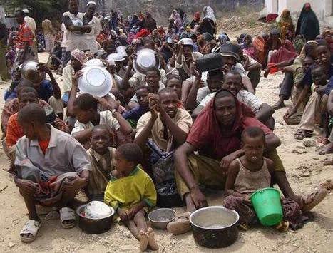 SOMALIA | Number of Somalis in crisis surges 20 percent | Food & Nutrition Security in East Africa | Scoop.it