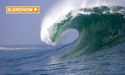 Why Has Wave Power Remained Decades Behind Other Renewables? | environment | Scoop.it
