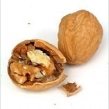 Want to have baby? Eat Walnuts   Healthy India   Sanjay Singh   Scoop.it