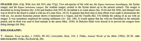 """Are Arabs and Muslims """"wild men"""" because the Bible says they are? 